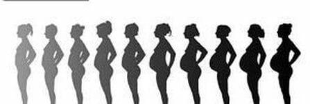 Keho muokkautuu raskausaikana ja synnytyksen jälkeen