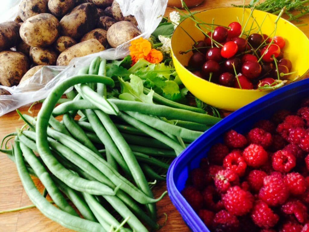 Miten vähentää ruokahävikkiä?