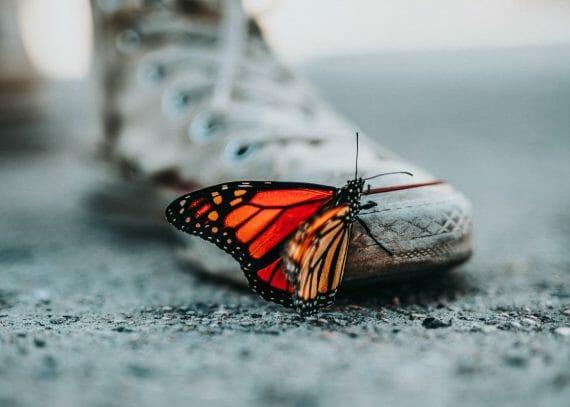 Kaikki tapahtuu sinua varten. Yksikään asia ei ole elämässäsi sattumalta. Maailma toimii peilinäsi ja tuo sinulle sen, mitä sisimmässäsi tarvitset.